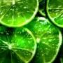 Avatar LemonNADE