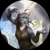 Avatar Mirgor
