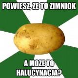 Avatar Lotysz_z_Zimniokiem