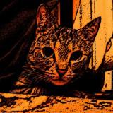 Avatar Beza_Cat