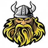 Avatar Vikings
