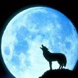 Avatar Artemida_Moon