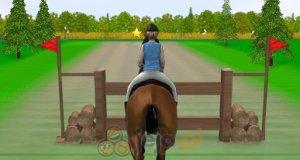Wyścig konny 2