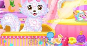 Kociak księżniczki Belli