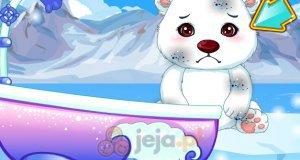 Mycie niedźwiadka polarnego