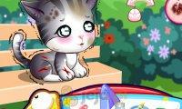 Doc McStuffins: Opiekowanie się bezpańskim kotkiem
