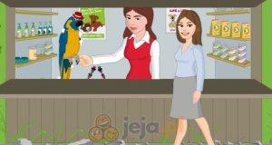 Papuga potrzebuje właściciela