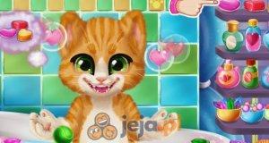 Kąpanie kota