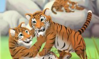 Opieka nad tygrysami