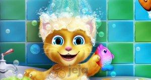 Kąpiel rudego kota