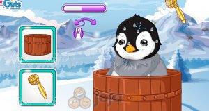 Zakłopotany pingwinek