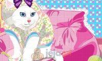 Słodka kotka