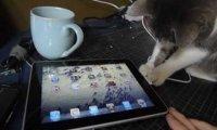 Po co jest iPad?