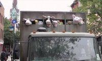 Owieczki jadą na rzęź. Na szczęście to zabawki.