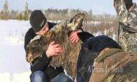Ludzie ratujący zwierzęta