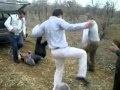 Podstarzali tancerze na łonie dzikiej natury