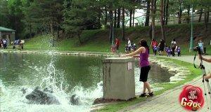 Ukryta kamera - Statua Jezusa ląduje w wodzie