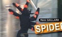 Nimportequi - pająk