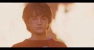Harry Potter - Daj kamienia