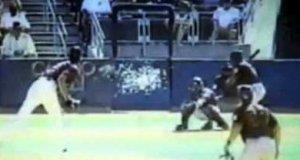 Piłka baseballowa vs ptak