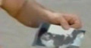 Ukryta kamera  - zaginiony kotek
