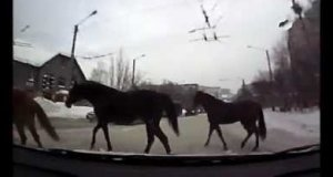 Na co możesz natrafić na przejściu w Rosji?