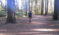 Kolejny chuligan w lesie