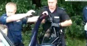 Brutalna interwencja policji