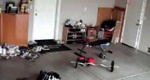 Twardziel na siłowni