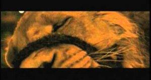 Opowieść z Narnii w skrócie