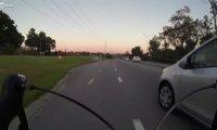 Rowerzysta kontra nieostrożni kierowcy