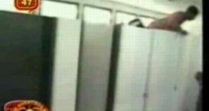 Ukryta kamera - tygrys w toalecie