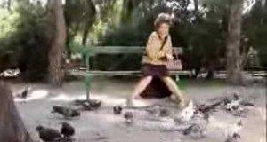 Babcia i gołębie