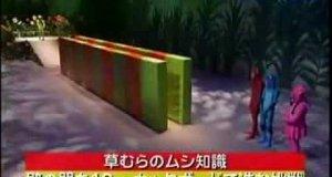 Hulajnoga w japońskim teleturnieju
