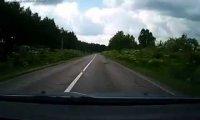 Refleks kierowcy