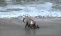 Pijany mężczyzna pływa na desce surfingowej