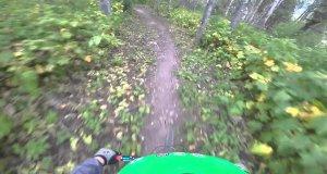 Jedziesz sobie spokojnie przez las, a tu nagle...