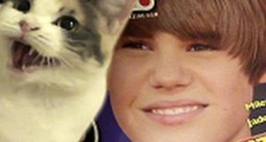 On nienawidzi Justina Biebera