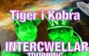 Tiger i Kobra Intercwellar - Zdupping