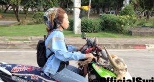 Kobieta z ptakiem w Tajlandii