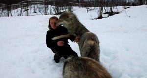 Jedna kobieta + cztery wilki