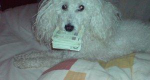 Najlepsza ochrona pieniędzy