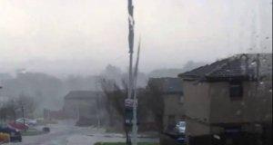 Niecodzienny widok w Szkocji