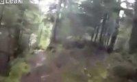 Spotkanie z niedźwiedziem podczas biegu po lesie