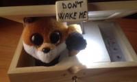 Nie budź mnie!
