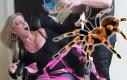 Przerażający żart z tarantulą