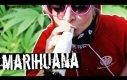 Polacy o marihuanie
