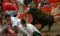 Wściekły byk