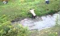 2 pijanych facetów i rzeka