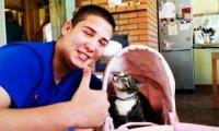 Kot w wózku